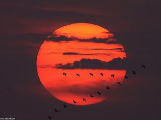 صور غروب الشمس