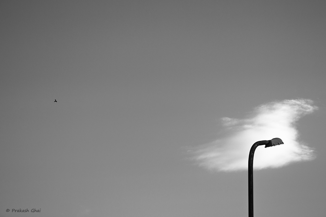 A Black and white Minimalist Photo of Cloud passing by a Street Lamp and a bird flying by.