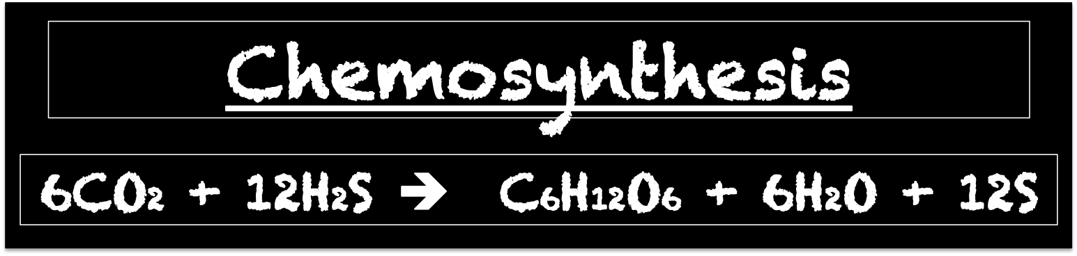 Chemosynthesis equation in words