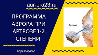 Программа Аврора (Aurora) при Артрозе 1-2 степени
