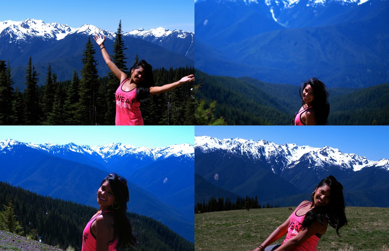 Hurricane Ridge If You Only Have Enough Time To Do Just One Thing In Olympic National Park Better Make It Is Located 17 Miles South Of
