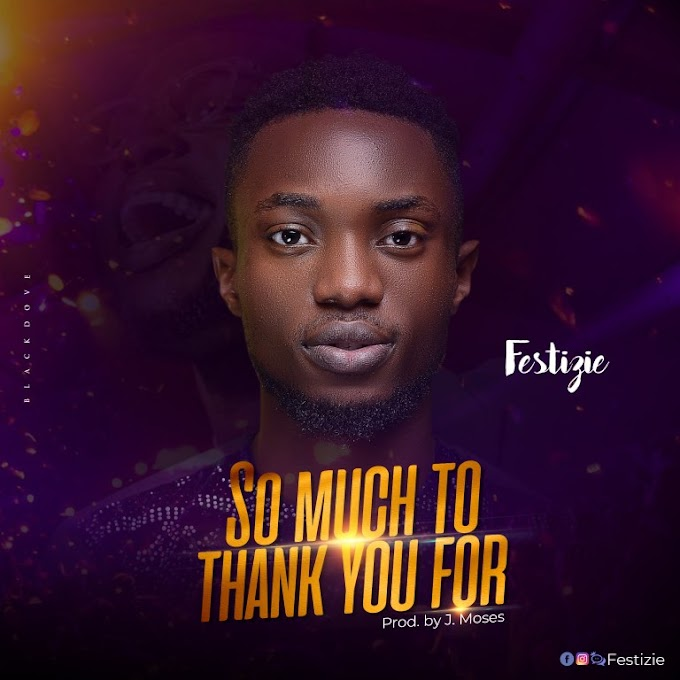 Download Gospel music: So much to thank you for by Festizie