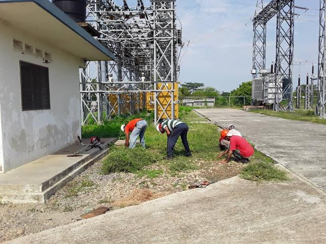 APURE: Ejecutan control de vegetación en líneas de transmisión, circuitos de distribución y subestaciones