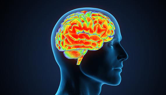 Factsram.blogspot: How To Improve Yor Memory