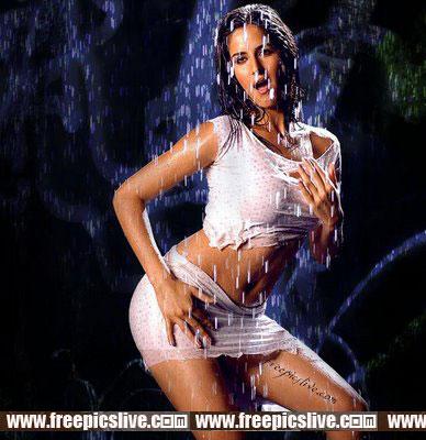 Katrina Kaif Hot Pics Gallery: Katrina Kaif hot Pictures ...