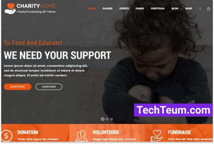 Charity Home by TonaTheme (Themeforest)