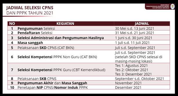 jadwal cpns pppk 2021