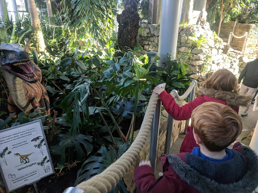 20+ UK Days Out for Kids who Love Dinosaurs   - Sunderland Winter Gardens
