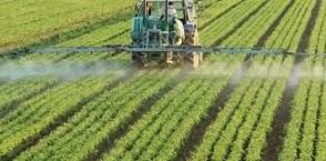 Bitkisel Üretim ve Teknolojileri nedir