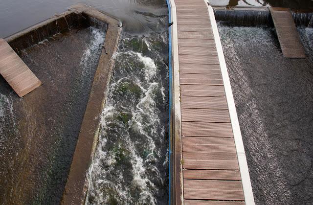 Küsten-Spaziergänge rund um Kiel, Teil 4: Entlang am Ufer der Schwentine. Die Umsatzstelle für Kanus und kleine Boote an der alten Schwentine-Brücke.