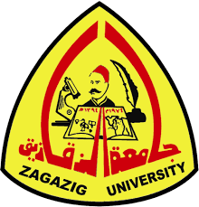 الموقع الرسمي لجامعة الزقازيق اقسام الجامعة والكليات Zagazig University