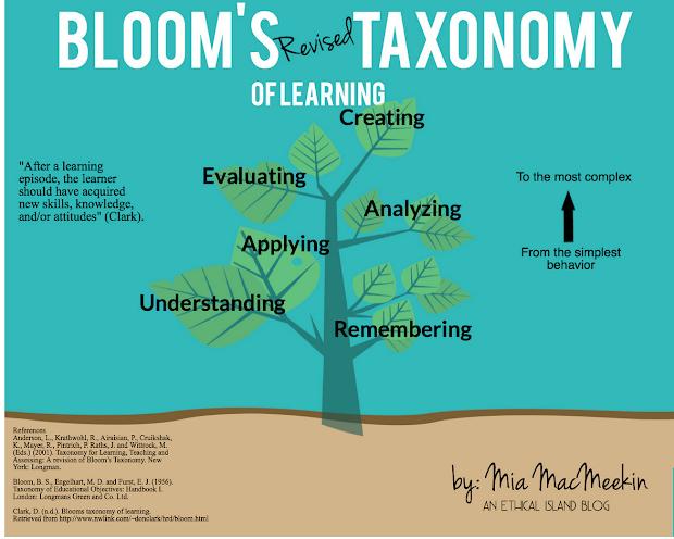 8 Wonderful Blooms Taxonomy Posters Teachers