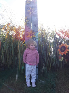 a toddler in a pink sweatshirt stands in front a height chart painted with yellow flowers at Autumn Grove Apple Orchard