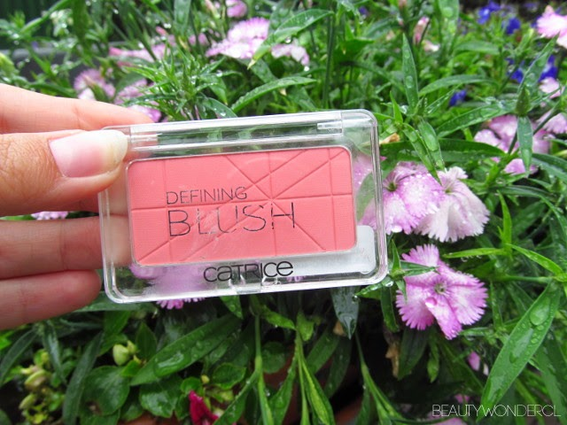 blush catrice Chile review