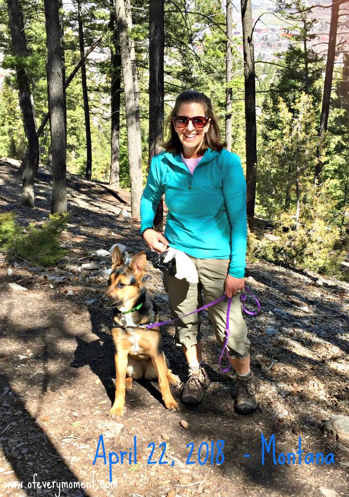 Montana hike with the dog