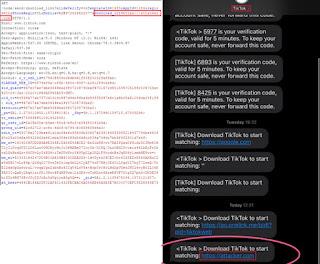 tiktok account hacking
