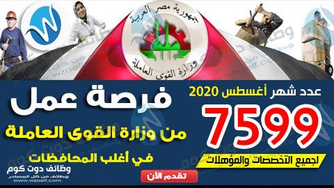 وظائف وزارة القوى العاملة 2020 اعلان عدد 7599 فرصة عمل جديدة ضمن النشرة القومية للتشغيل لشهر اغسطس 2020