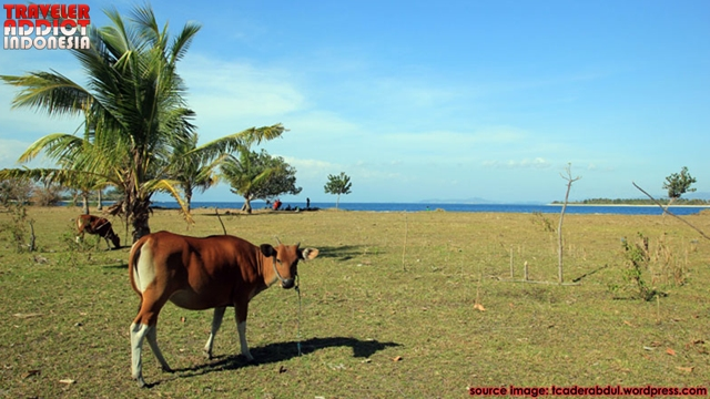 Gili Layar Lombok is one of the small islands