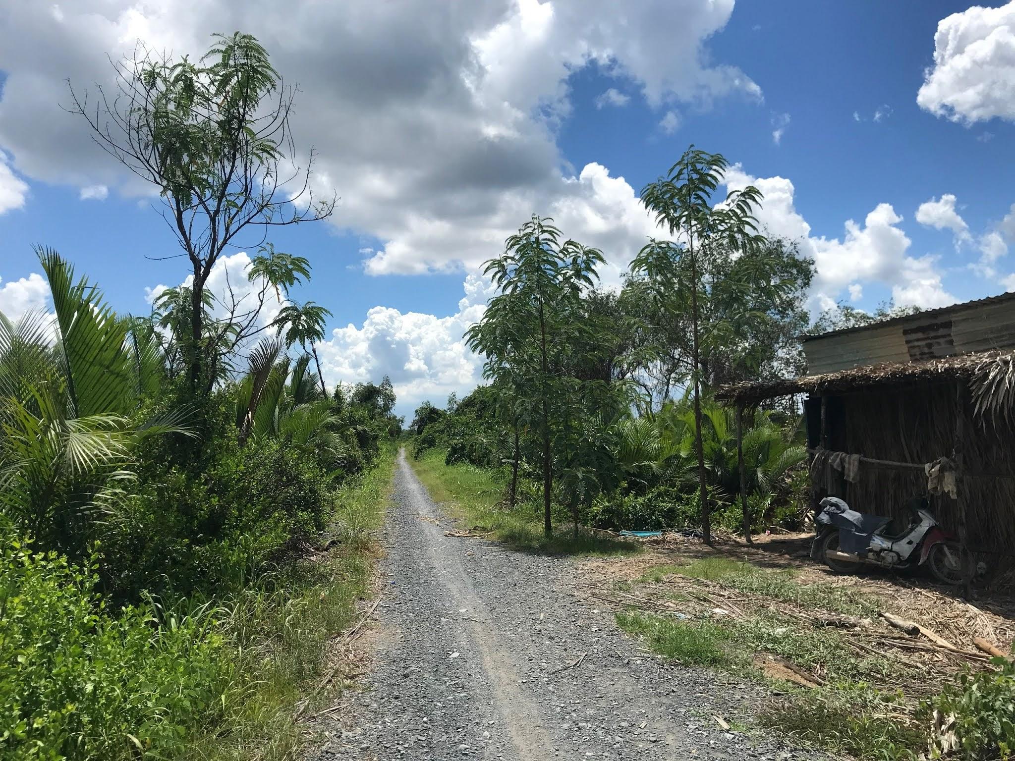 Bán 1.5ha đất trồng cây lâu năm, đường Đê An Hòa, Tam Thôn Hiệp