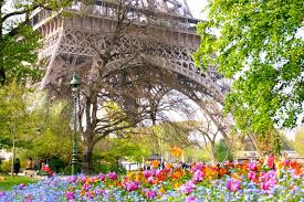Eiffel tower in spring; eiffel tower surrounded by tulips and spring flowers.