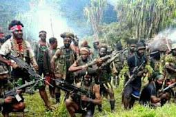 Laporan Resmi Perang KODAP III NDUGAMA Selama Setahun; Ini jumlah Prajurit TPNPB yang Gugur