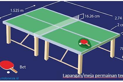 Aktivitas Permainan Bola Kecil Melalui Permainan Tenis Meja