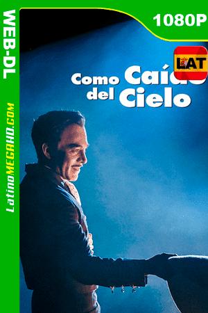 Como caído del cielo (2019) Latino HD WEB-DL 1080P ()