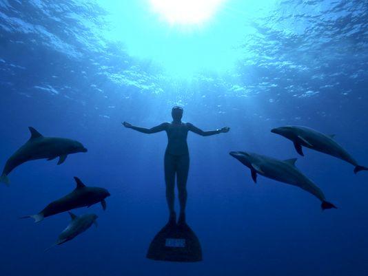 uomo-nuota-con-delfini