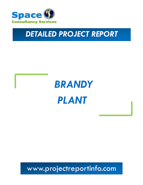Project Report on Brandy Plant