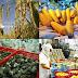 Chỉ số CPI tháng 11 của Thành phố Hồ Chí Minh tăng 0,55%