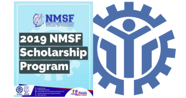ATTENTION: 2019 NMSF Scholarship Program | Free Training & Free Assessment