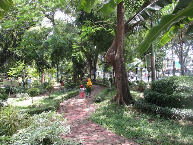Aneka Tanaman di Taman Flora Bratang Surabaya