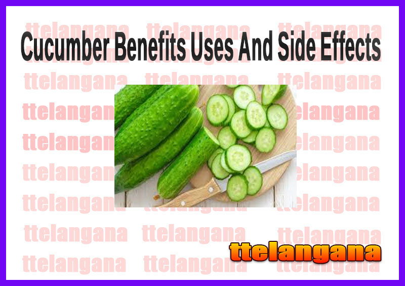 Cucumber Benefits Uses And Side Effects