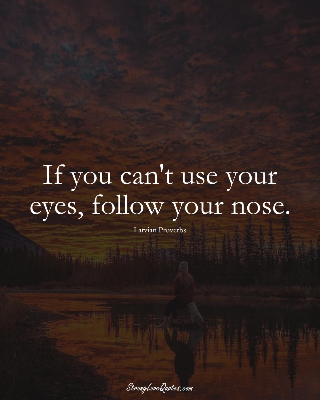 If you can't use your eyes, follow your nose. (Latvian Sayings);  #EuropeanSayings