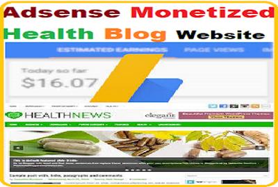 Adsense Monetized Travel blog website