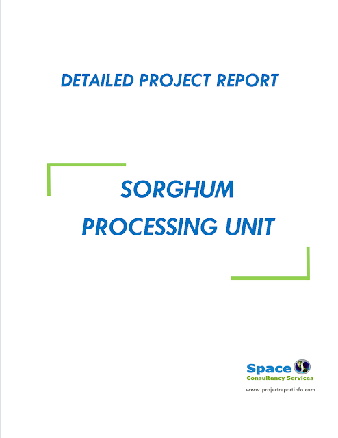 Project Report on Sorghum Processing Unit