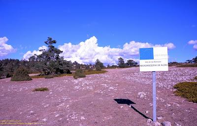 puebla-san-miguel-alto-barracas