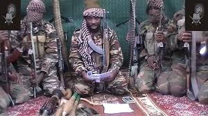 Boko Haram militants has kidnapped 10 members of the University of Maiduguri research team prospecting for oil in northeast Nigeria.