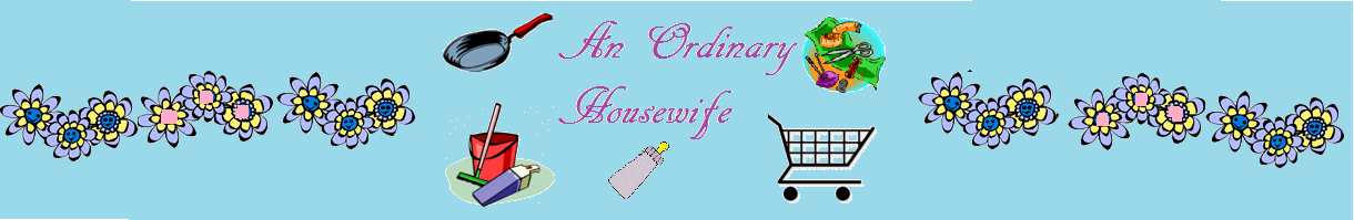 An Ordinary Housewife