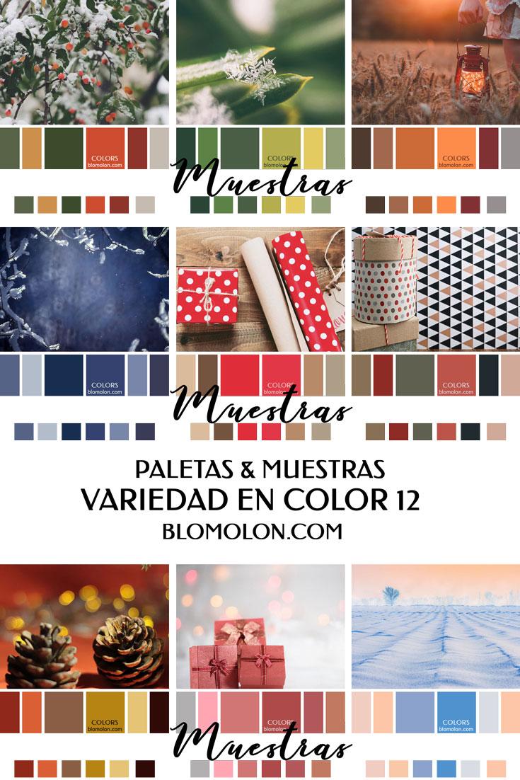 variedad_en_color_blomolon_11