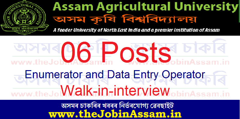 College of Agriculture, AAU Recruitment 2021: Apply for 06 Enumerator and Data Entry Operator Posts