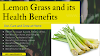 Lemon Grass Health Benefits : Use, Care, and Grow at Home