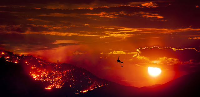 How wildfires trap carbon for centuries to millennia