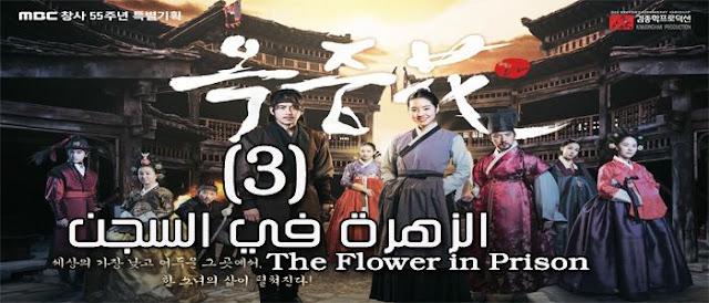 مسلسل The Flower in Prison كوري الحلقة 3 الزهرة في السجن Episode 3 مترجمة