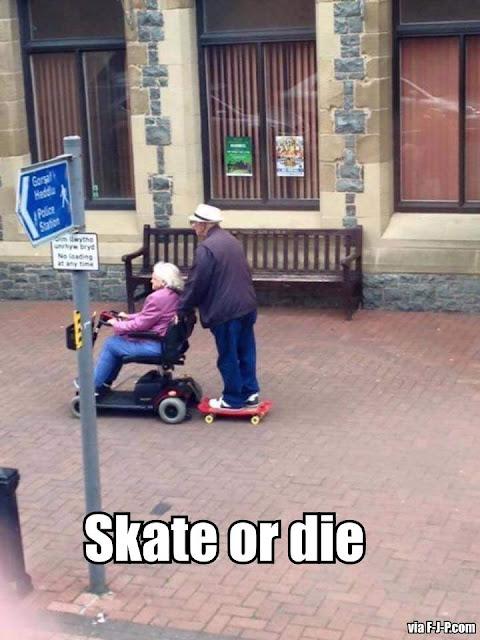 Funny Skate or Die Meme Joke Picture