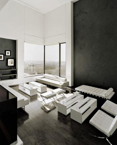 7 WONDERFULL BLACK AND WHITE INTERIOR DESIGNS
