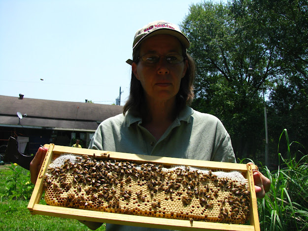 Susan holding a frame of bees