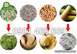 Máy băm nghiền thức ăn gia súc