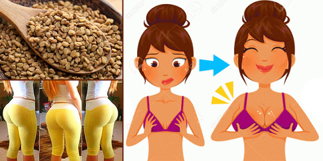 Fenugreek Grows Your Buttocks And Breasts The Size You Want, See The Details!