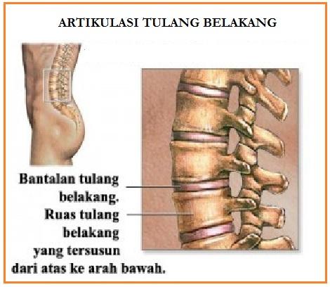Tratament sare artroza - Sare pentru tratamentul artrozei deformante